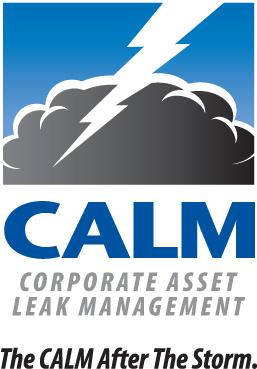 Corporate Asset Leak Management Moisture Management